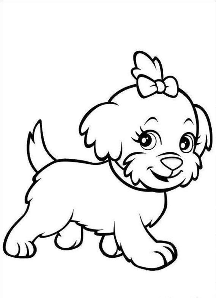 900x1240 yellow lab puppy coloring pages lovely how to draw a lab hundreds