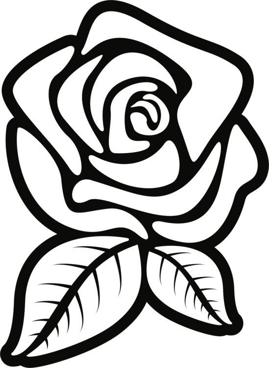549x750 Black Rose Black And White Silhouette Drawing Cc0