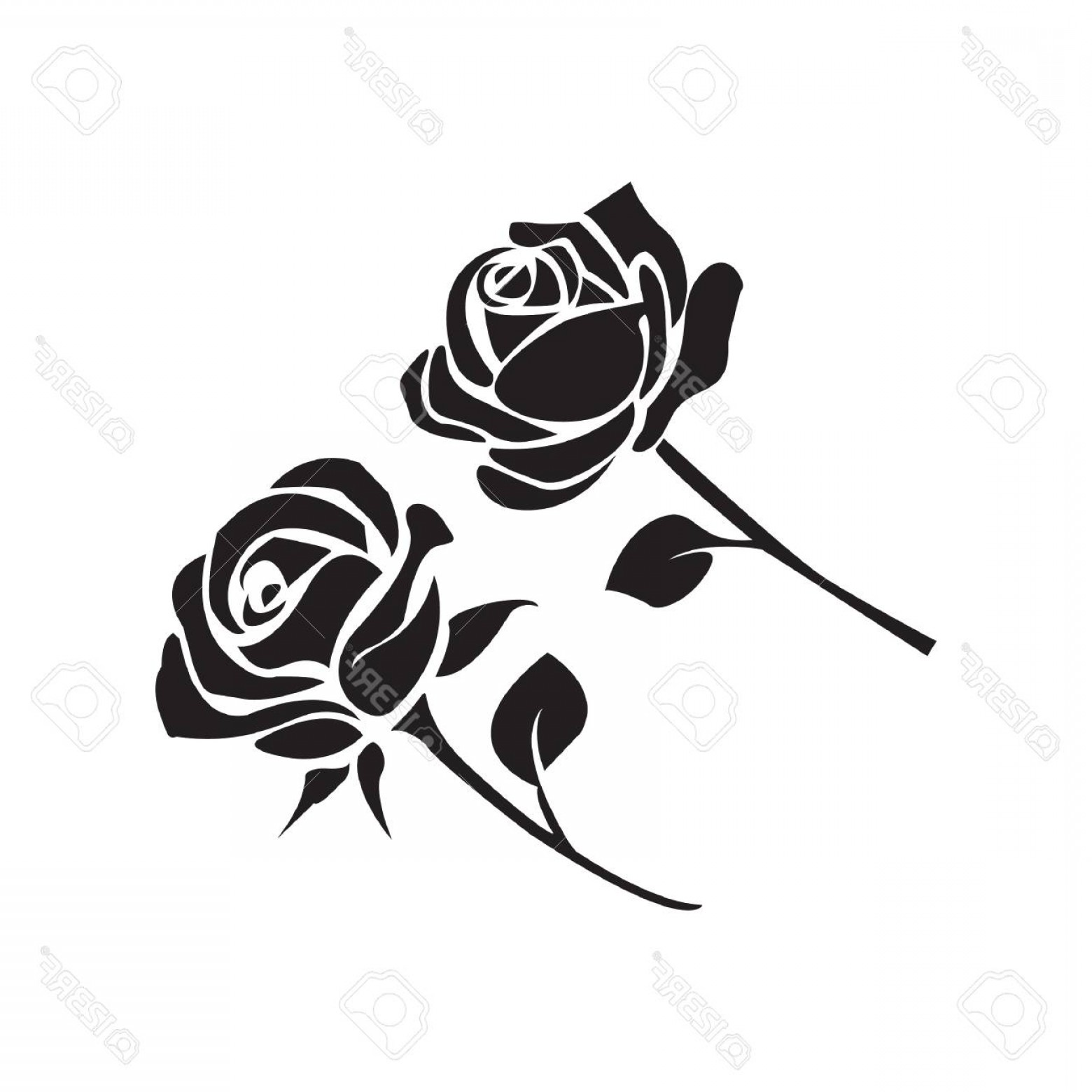 1560x1560 Photostock Vector Simple Flat Black Rose Icon Vector Arenawp