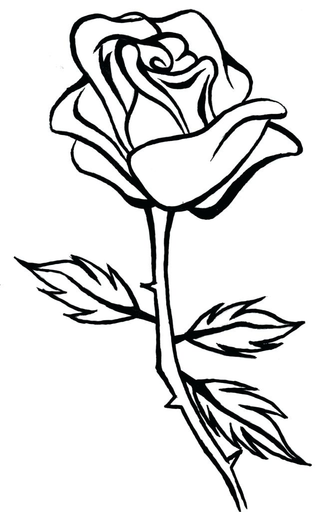 639x1024 Simple Rose Bud Drawing On Simple Rose Drawing Simple Rose Bud