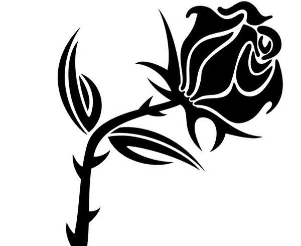 600x490 Black Rose Vector Image