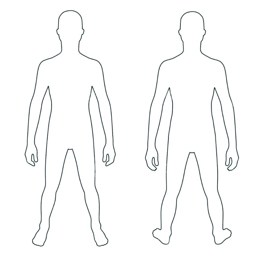 Blank Drawing Of Human Body | Free download on ClipArtMag