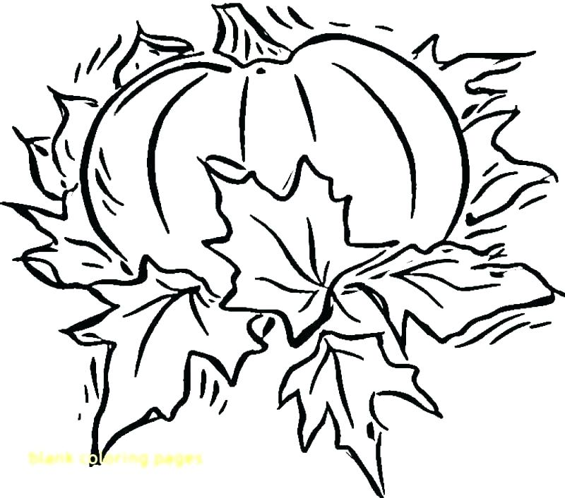 800x706 Printable Blank Coloring Pages Blank Coloring