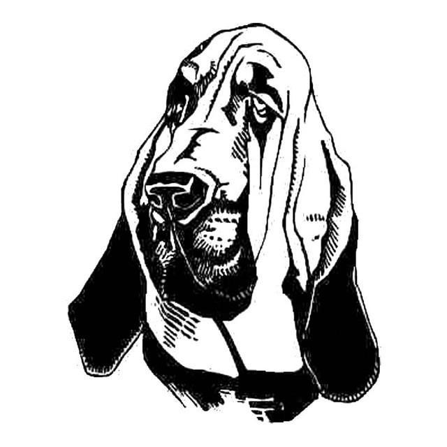 640x640 Bloodhound Dog Car Sticker I Love Cat Socks