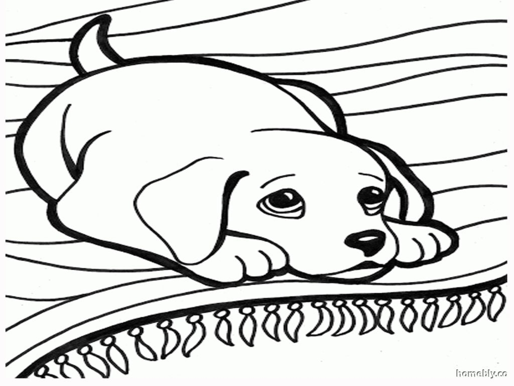 1024x768 bloodhound dog coloring pages