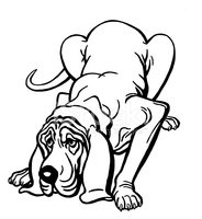 184x200 bloodhound dog stock vectors