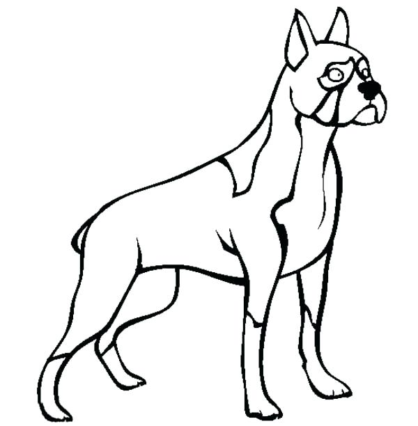 600x612 boxer dog coloring pages bloodhound coloring pages bloodhound
