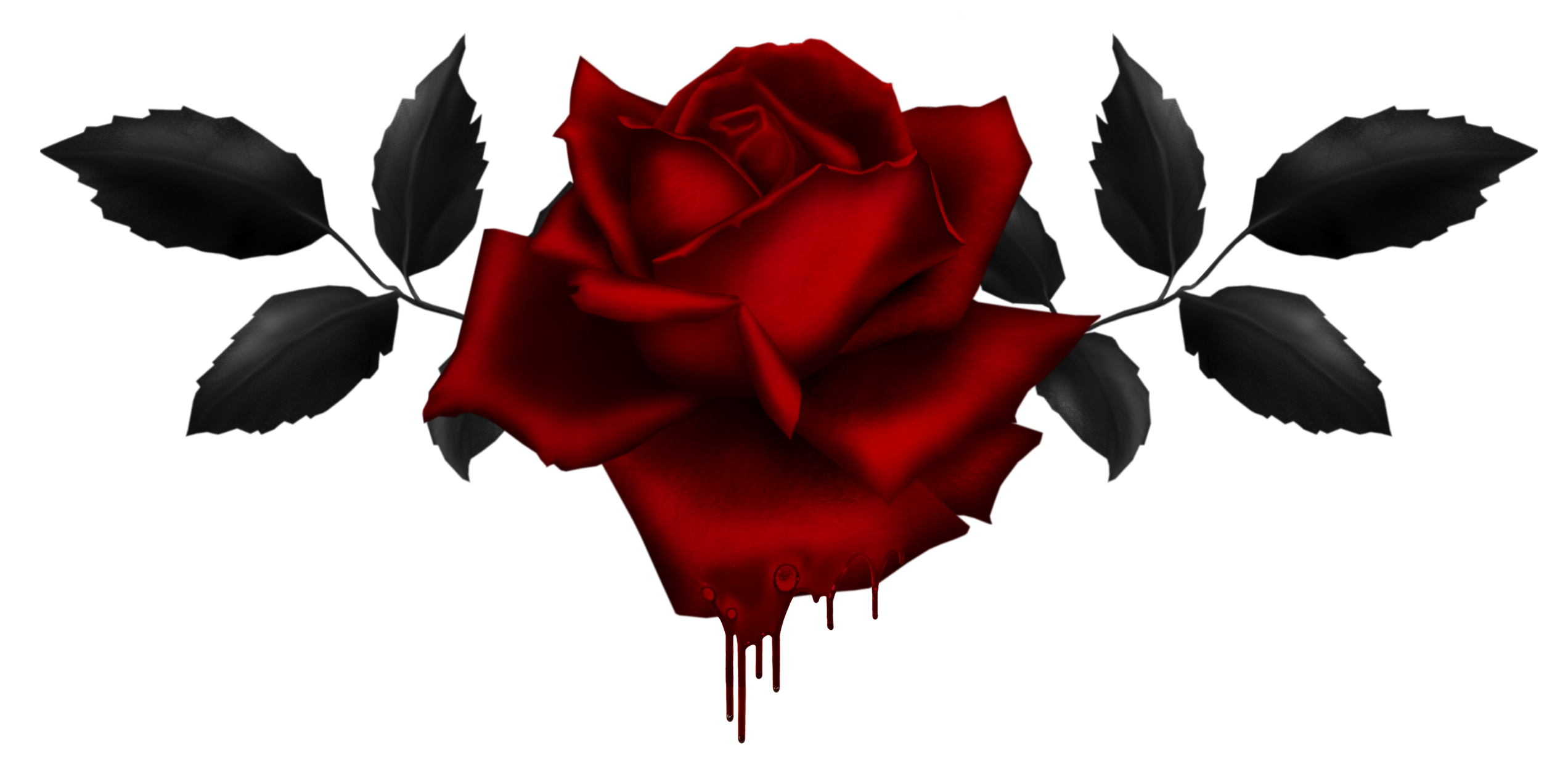 2544x1243 Dripping Drawing Rose Transparent Png Clipart Free Download