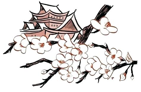 475x308 drawing of cherry blossom tree cherry blossom drawing drawing