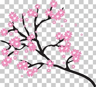 310x282 cherry blossom drawing png, clipart, area, blossom, blossoms