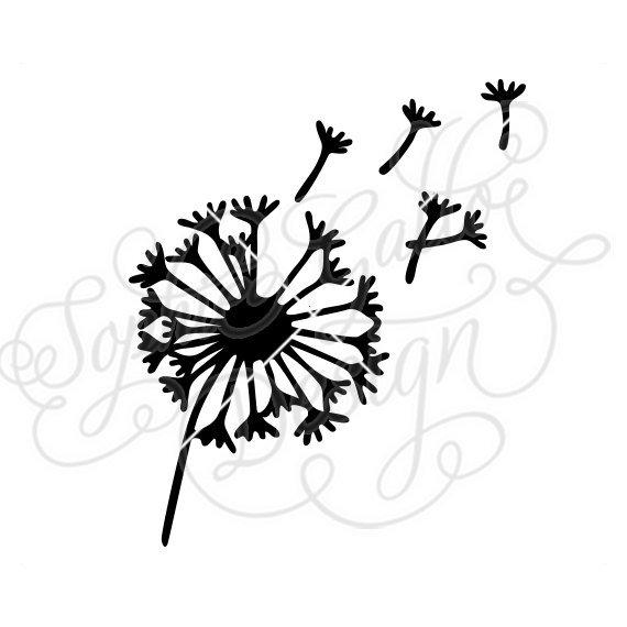 Blowing Dandelion Drawing