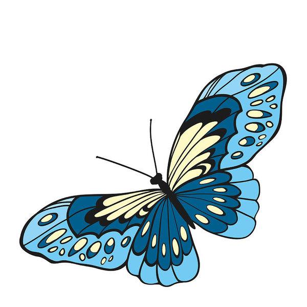 600x600 Blue Butterfly With Open Wings In A Top View Art Print