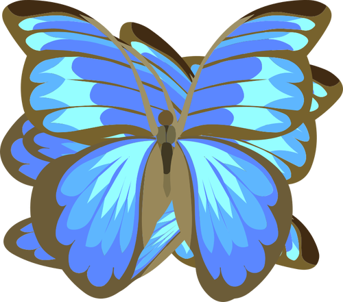 500x441 Blue Butterfly Drawing