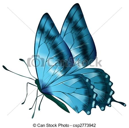 450x448 Drawing Of Blue Butterfly In A White Background