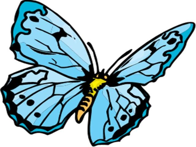 640x480 Flowers Drawings Inspiration Drawings Of Flowers And Butterflies