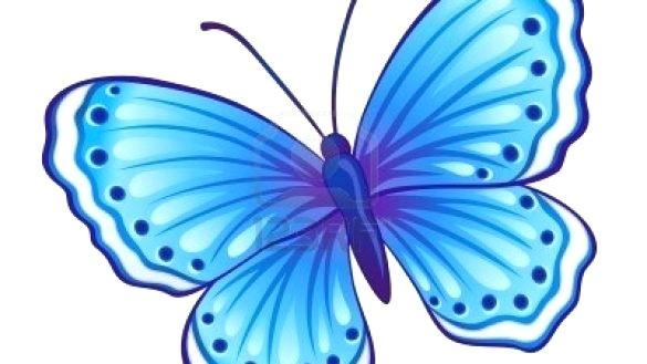 585x329 How To Colour Butterfly Important How To Color A Butterfly Drawing