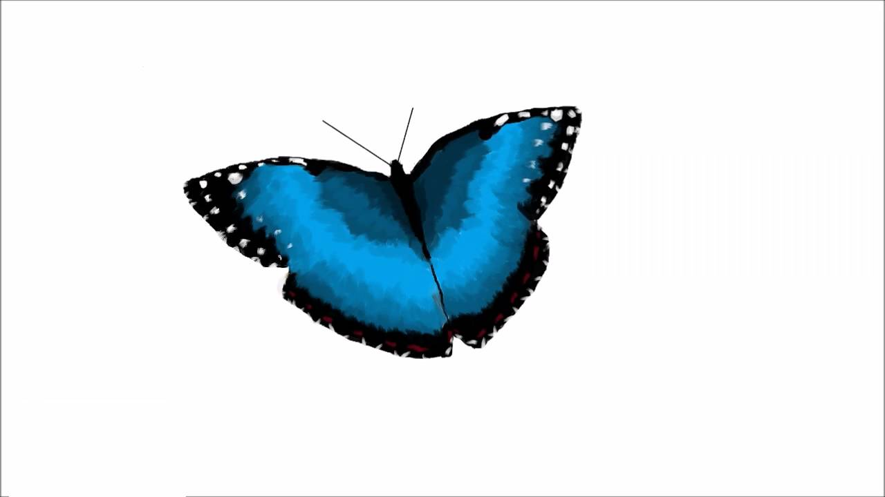 1280x720 Ms Paint Digital Drawing Drawing A Blue Monarch Butterfly