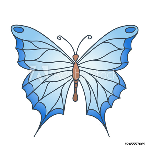 500x500 Simple Drawing Blue Butterfly Isolated On White Background, Vector