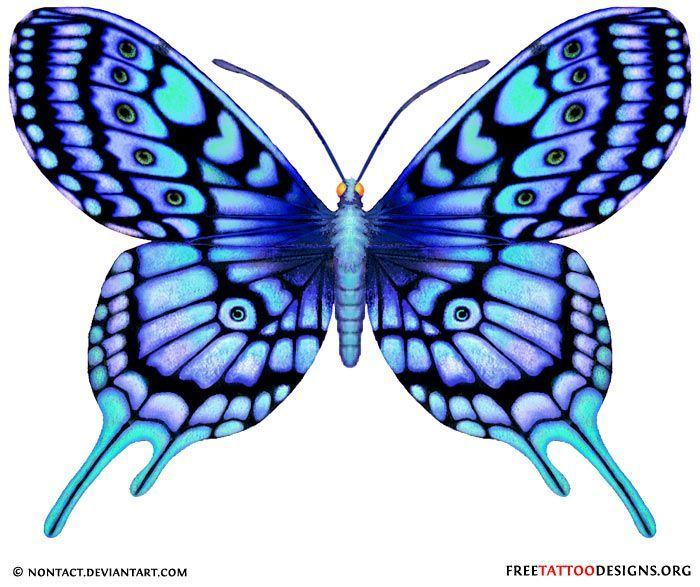 700x587 Blue Butterfly Drawing Blue Tattoo Butterfly Tattoos