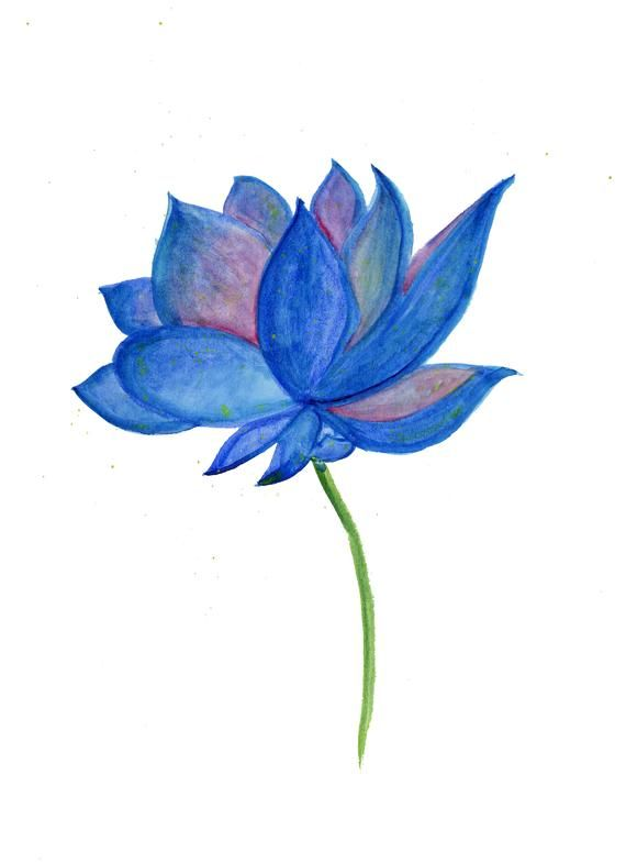 570x785 lotus art, lotus painting, lotus flower art, lotus wall art, lotus