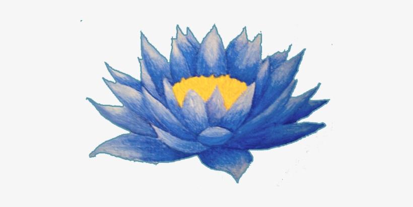 820x412 Lotus Flower Tattoos High Quality Photos And Flash