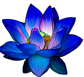320x294 My Sister Wanted Me To Draw Her A Lotus Because Shes Getting