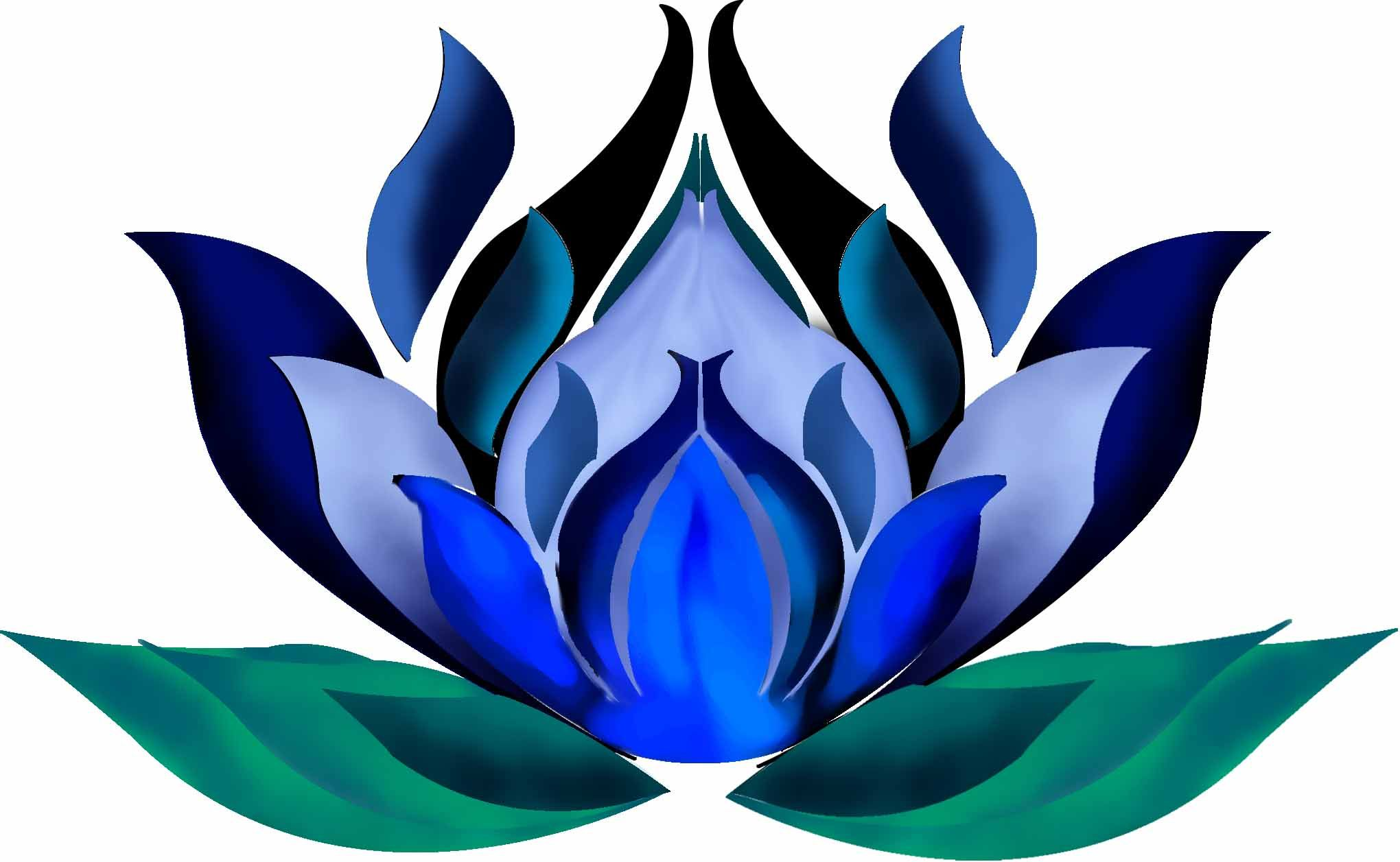 2040x1257 Blue Lotus, Traditional Flower Of Love In Egypt Interesting