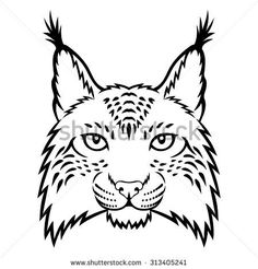 236x246 Best Bobcats Images In Drawings, Graphics, Lynx