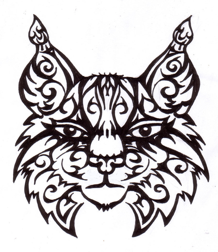 833x959 Bobcats Drawing Free Download