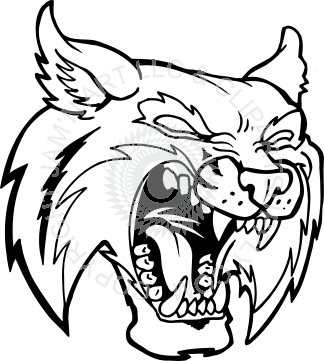 324x361 Collection Of Free Bobcat Vector Angry Download On Ui Ex
