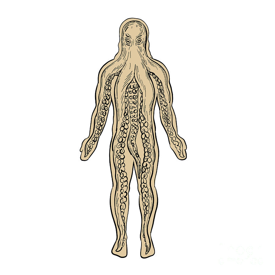 900x900 Alien Octopus Inside Human Body Drawing Photograph
