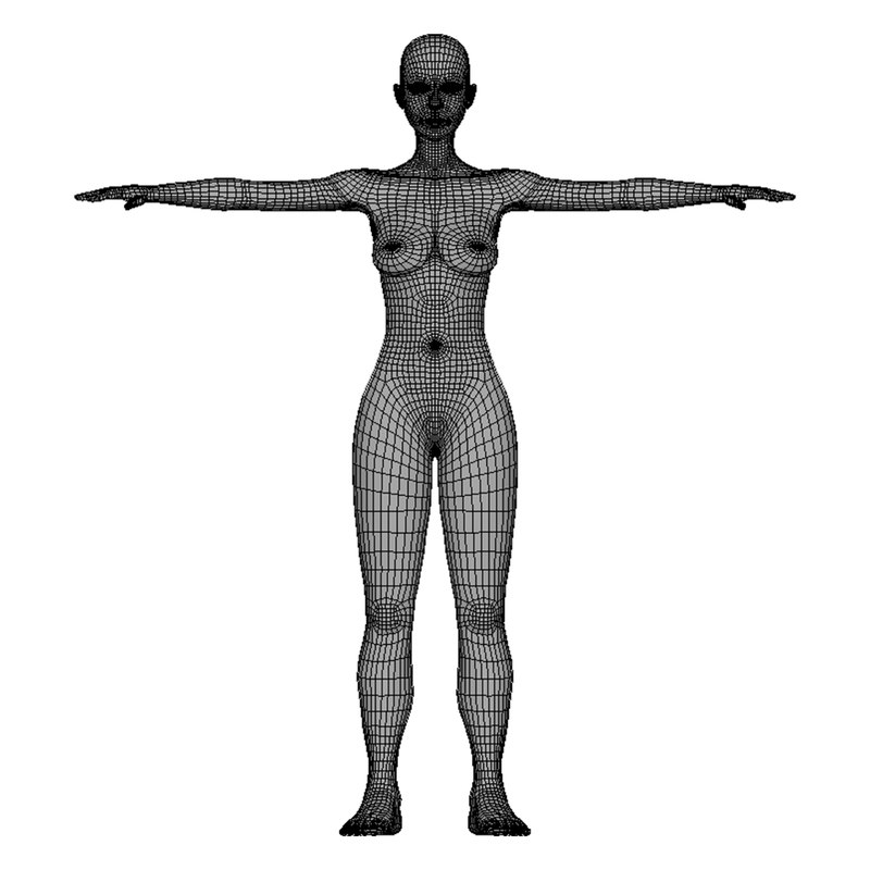 Body Base Drawing