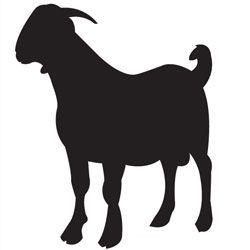 250x250 Boer Goat Outline