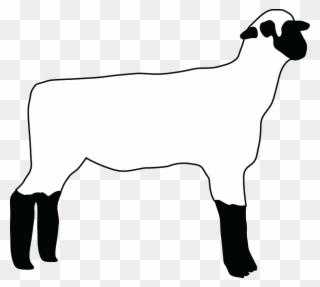 320x287 boer goat pygmy goat anglo nubian goat drawing graphic