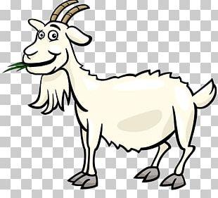 310x281 Boer Goat Sheep Cartoon Png, Clipart, Camel Like Mammal, Cattle