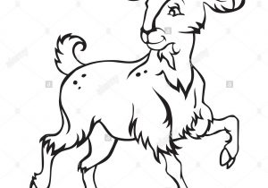 300x210 goat cartoon drawing boer goat clip art images of drawing goat