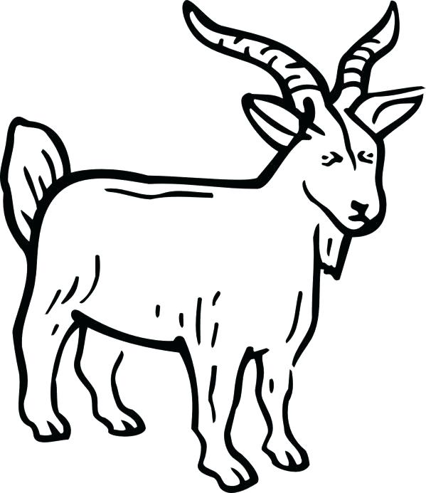 599x693 Goat Coloring Pages Billy Goats Gruff