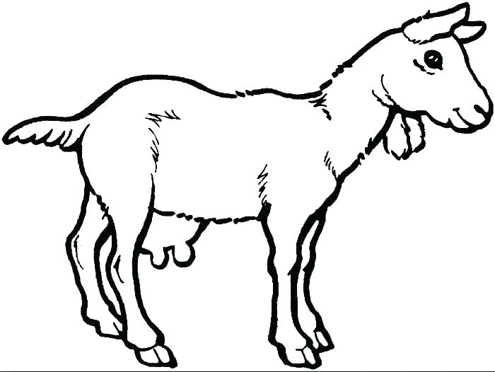 700x526 Goat Coloring Pages Three Billy Goats Gruff Coloring Pages Three