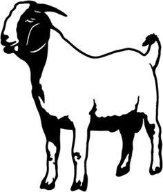 236x278 Best Millie's Billie's Images Boer Goats, Goat Farming, Goats
