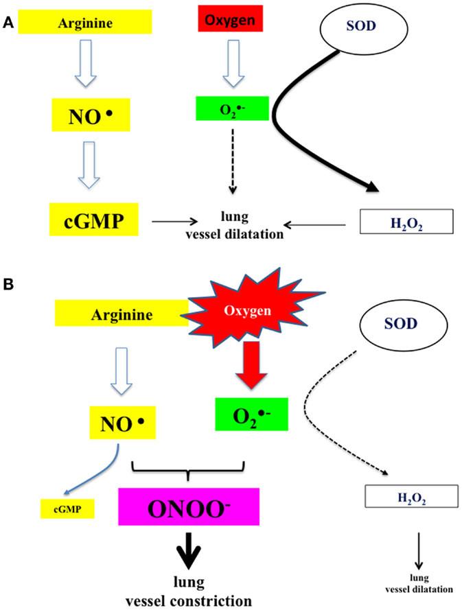 673x889 bohr diagram aluminum best of bohr diagram for oxygen