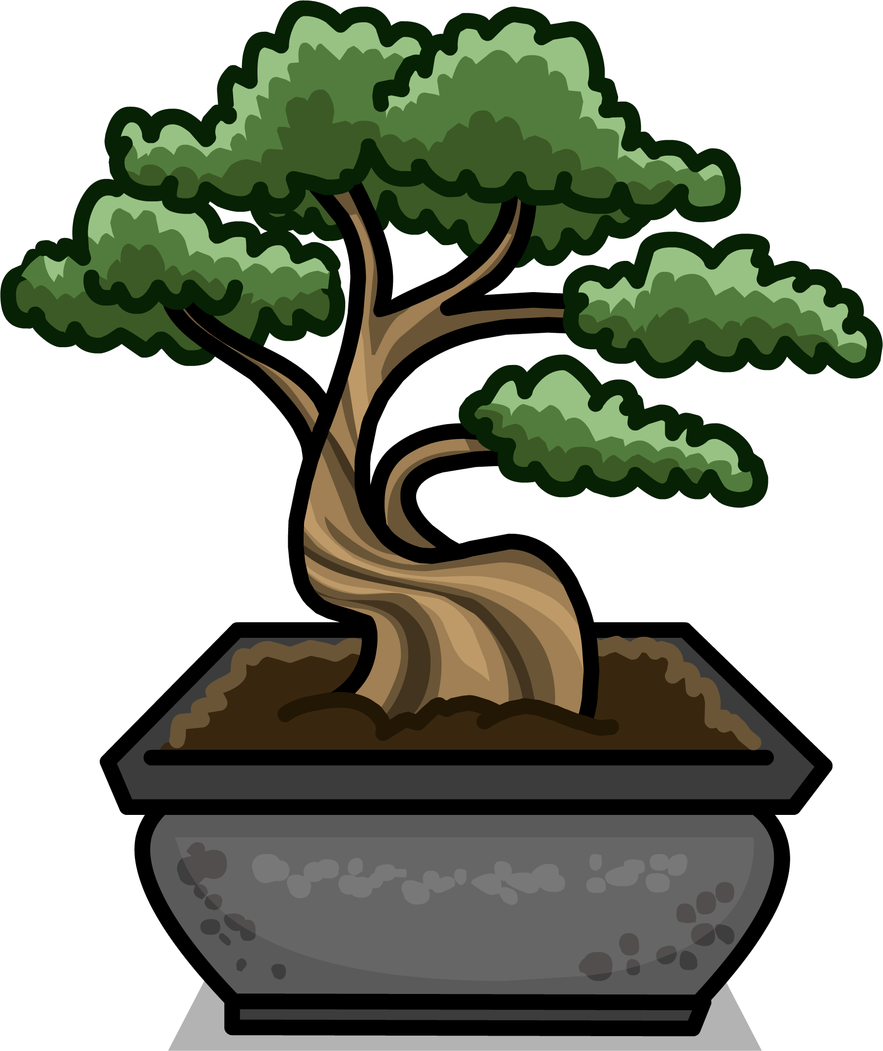 1780x2119 Bonsai Download Free Clipart With A Transparent Background