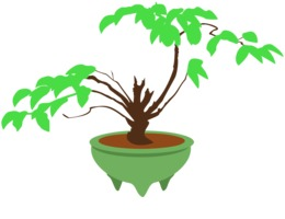 260x200 Tree, Drawing, Plant, Transparent Png Image Clipart Free Download