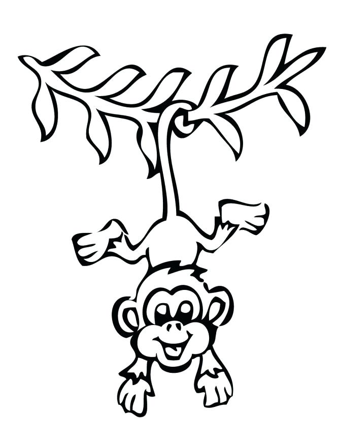670x867 Monkey Outline Monkey Outline Drawings