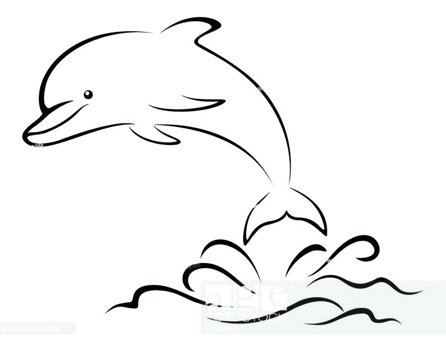 913x700 Outline Of A Dolphin Dolphin Outline Line Drawing