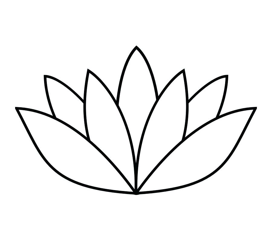 900x800 Flower Outline Coloring