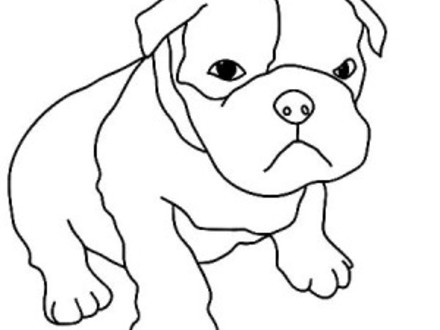440x330 boxer dog coloring page, boxer, free engine image for user, boxer