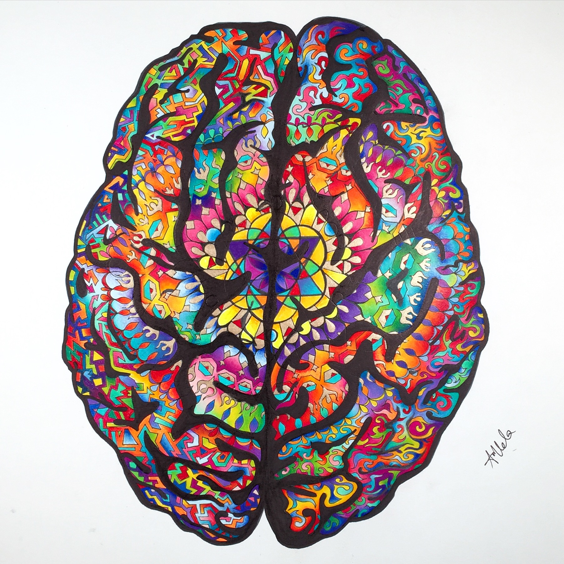 Brain Pencil Drawing | Free download on ClipArtMag