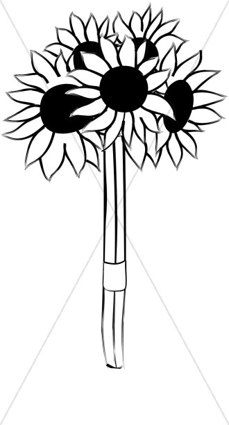 330x612 Cut Sunflowers Tied In A Bouquet Church Bouquet Clipart
