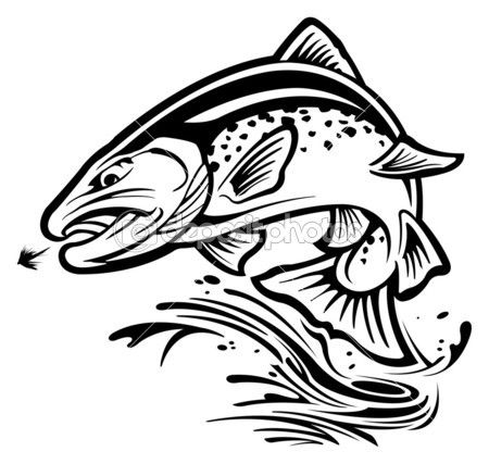 450x427 Trout Stock Illustration