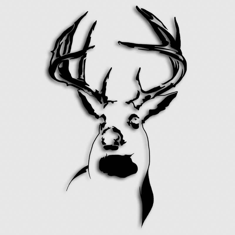 800x800 Buck Drawing White Tailed Deer For Free Download